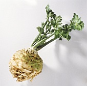 A celeriac bulb with leaves