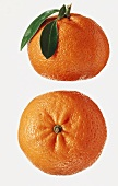 Two mandarin oranges, one with leaves on stalk