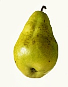 A yellowy-green pear with stalk (variety: Dr. Jules Gunot)