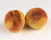 Two Moldy Peaches