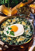 Gratin of spinach with cheese and a fried egg