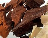 Schokoladenstücke (dunkel- & hellbraune & weisse Schokolade)