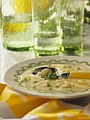 White Bean Creamy Soup