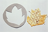 A Cookie Cutter with a Cookie