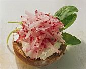 Cream cheese sandwich with radish strips