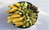 Various types of banana in a bowl