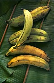 A few plantains (cooking bananas) on banana leaves
