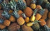 Viele ganze Ananas, darauf zwei Ananasviertel (Ausschnitt)