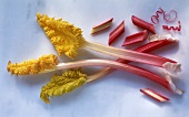 Whole sticks of rhubarb with leaves & pieces of rhubarb