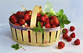 Fresh strawberries with a few leaves in a chip basket