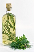 A bottle of herb vinegar with tarragon & fresh herbs