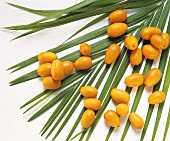 Lots of whole kumquats on a palm leaf