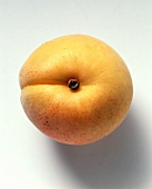 A Single Apricot from Overhead