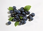 Blueberries with small leaves on white background