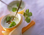 Creamy watercress soup with cress leaves and croutons