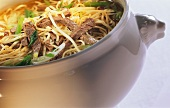 Noodle soup with beef and spring onions in pot