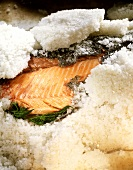 Salmon trout in salt coating with dill