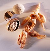 Nutmegs and nutmeg blossom on light background