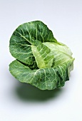 A pointed cabbage with drop of water on a light background