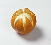 Orange with peel cut open on white background