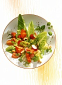Papaya salad with romaine lettuce, radishes & tomatoes