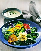 Herb and flower salad on a blue plate