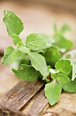 Wild mint on wooden background in open air