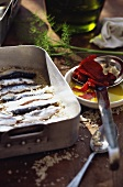 Marinated sardines in roasting dish; dried tomatoes; oil