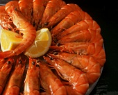 Boiled king prawns with lemon wedges on plate