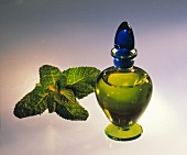 Mint oil in a small bottle, fresh mint beside it