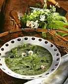 Burnt herb soup with daisies in plate