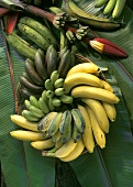 Various types of banana on banana leaves