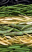 Various varieties of French beans (filling the picture)