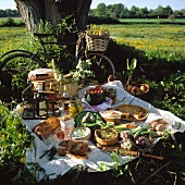 Picnic with quiche and pasties under a tree in the meadow