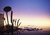 Kitchen utensils, cutlery and glass bowls in water