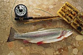Rainbow trout on brown marble with fishing tackle