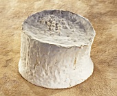 Chaource, a French soft cheese, on brown background