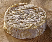 Romans, a French soft cheese, on a brown background