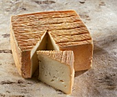 French Maroilles cheese on a light brown background