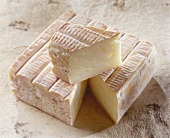 French Pave d Auge cheese on light brown background