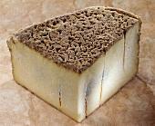 Bleu de Terminion, a French blue cheese