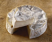 Camembert de Chevre, a French goat's cheese
