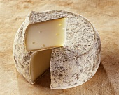 Chevrotin des Bauges, a French goat's cheese