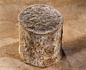 Persille de Tignes, a French goat's cheese