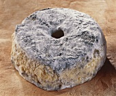 Petit Meule, a French goat's cheese