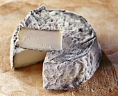 Selles-sur-Cher, a French goat's cheese