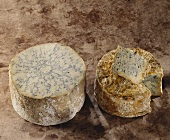 Blue Stilton cheese and Cabrales, Spanish blue cheese