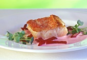 Fried pike-perch fillet with beetroot and cress
