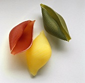 Three coloured pasta shells (conchiglie)