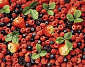 Fresh berries with strawberry leaves (filling the picture)